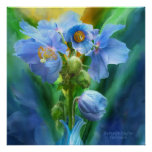 Blue Poppies Bouquet Art Poster/Print Poster