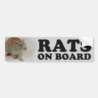 (Blue) Rats one board Bumper Sticker
