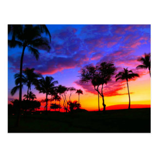 Blue Red Sunset Exotic Hawaiian Beach Palm Trees Postcard