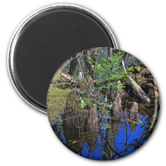 Blue Reflections in the Slough (Fort Myers, FL)- F 2 Inch Round Magnet