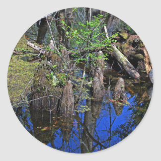 Blue Reflections in the Slough (Fort Myers, FL)- F Classic Round Sticker