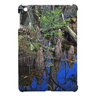 Blue Reflections in the Slough (Fort Myers, FL)- F iPad Mini Cases