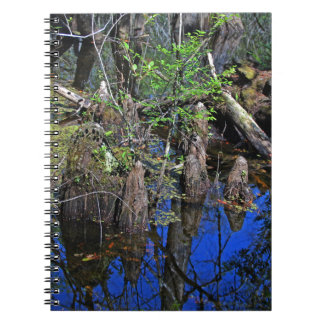 Blue Reflections in the Slough (Fort Myers, FL)- F Notebooks