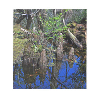 Blue Reflections in the Slough (Fort Myers, FL)- F Notepad