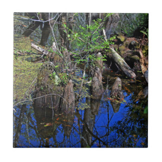 Blue Reflections in the Slough Tile