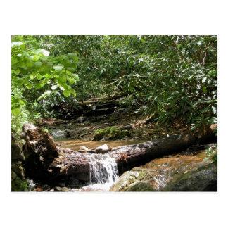 Blue Ridge Mountain Creek Postcard