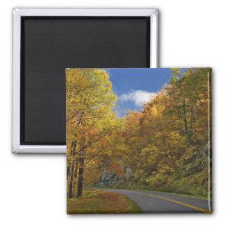 Blue Ridge Parkway curving through autumn colors Square Magnet