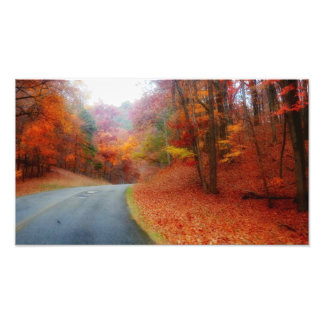 Blue Ridge Parkway Fall #2 Photo Print