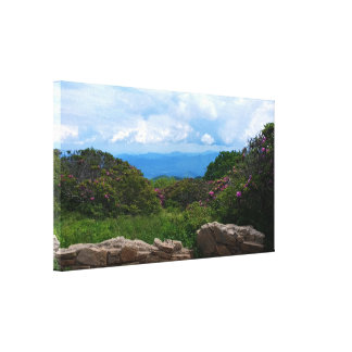 Blue Ridge Spring Canvas Print