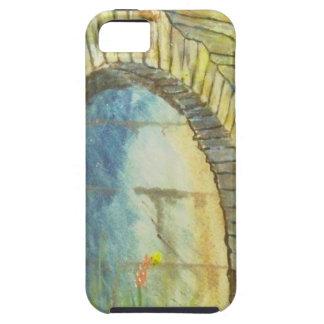 Blue Ridge Tunnel iPhone 5 Case