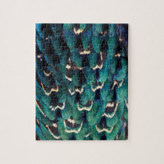 Blue Ring-necked Pheasant feather Puzzles