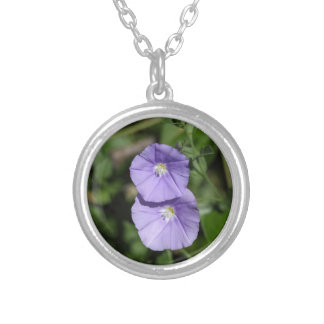 Blue rock bindweed (Convolvulus sabatius) Silver Plated Necklace