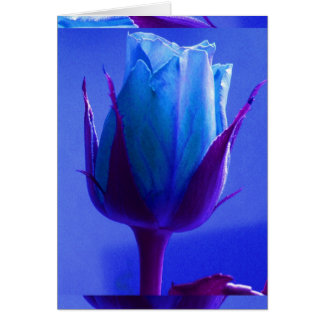Blue Rose Delight Card I - Customizable Card