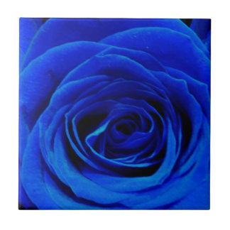 Blue Roses Tile