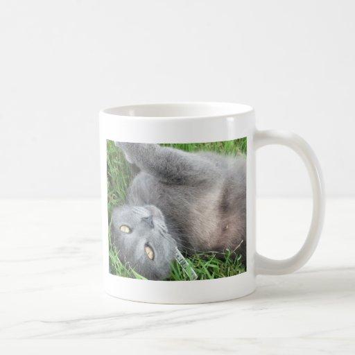 Blue Russian Cat Coffee Mugs
