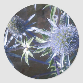 Blue Sea Holly Sticker