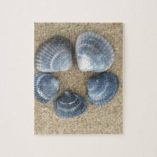 Blue shells jigsaw puzzle