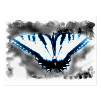 Blue Shock Butterfly Postcard