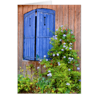 Blue shutters and flowers card