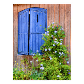 Blue shutters and flowers postcard