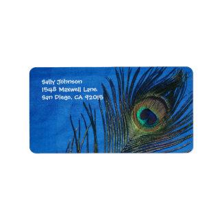 Blue Single Peacock Feather