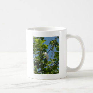 Blue skies and blossom coffee mug