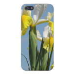 Blue Sky iPhone spec cases Yellow Iris Flowers Case For iPhone 5/5S