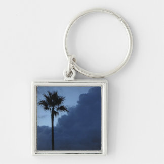Blue Sky Lone Palm Tree Silver-Colored Square Keychain