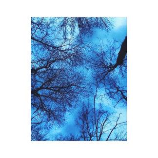 Blue Sky on Black Trees Canvas Art