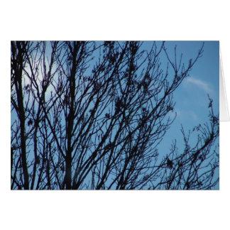 Blue sky tree on a card
