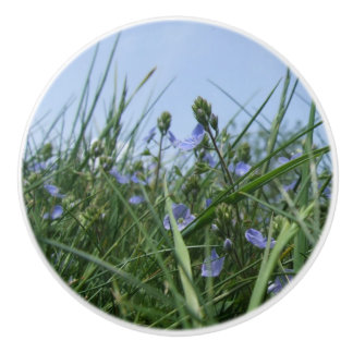 Blue Speedwell Flower Meadow Dresser Knob