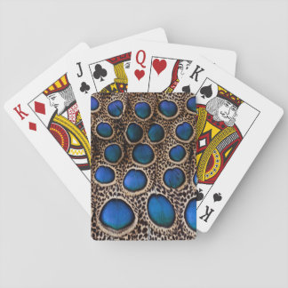 Blue spotted peacock pheasant playing cards