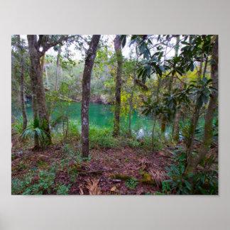 Blue Springs State Park, Florida Poster