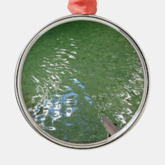 Blue Springs Water Florida Silver-Colored Round Ornament