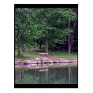 Blue Spruce Park #4 Postcard