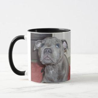 Blue_Staffordshire_Bull_Terrier_Puppy, Combo Mug
