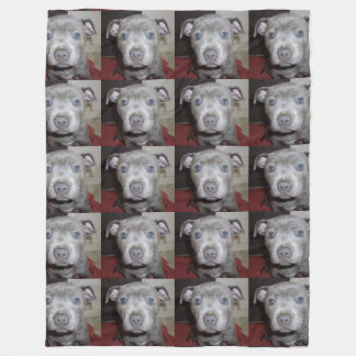 Blue Staffordshire Bull Terrier Puppy, Fleece Blanket