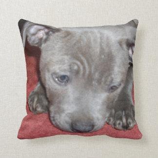 Blue Staffordshire Bull Terrier Puppy, Throw Pillow