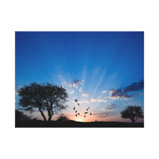 Blue Sun Burst Canvas Print