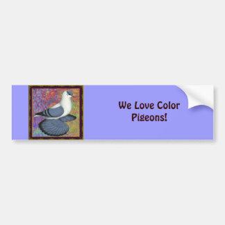 Blue Swallow Pigeon Framed Car Bumper Sticker