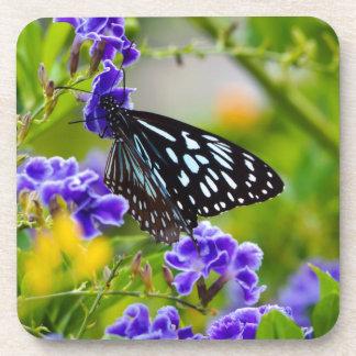 Blue tiger butterfly drink coaster set
