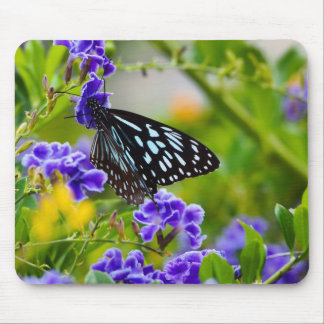 Blue tiger butterfly mousepad