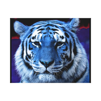 Blue Tiger Stretched Canvas Prints