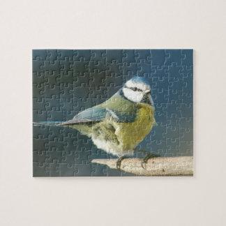 Blue tit ~ Bluetit ~ Mésange bleue ~ by GLINEUR Jigsaw Puzzle
