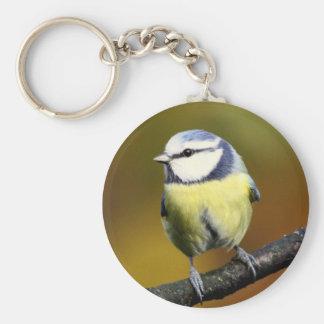 Blue tit sitting on a branch basic round button keychain