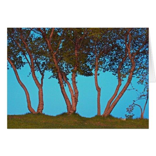 Blue Trees Card