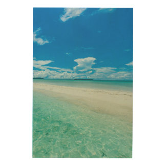 Blue tropical seascape, Palau Wood Canvas