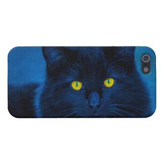Blue Velvet iPhone 5 Cases