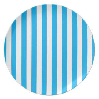 Blue Vertical Stripes Plate