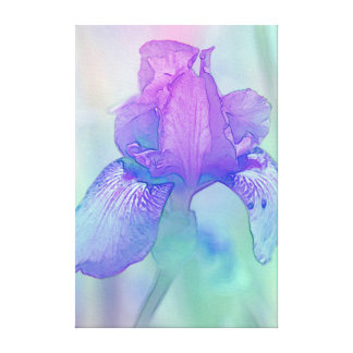Blue Violet Iris Digital Watercolor Canvas Print